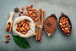 färskt kakaopulver och kakaobönor foto