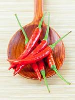 röda chili i en sked foto