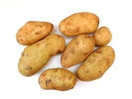 potatis på en vit bakgrund foto