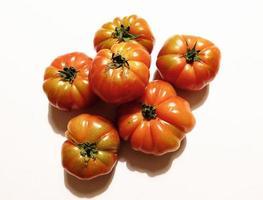 tomater på en vit bakgrund foto