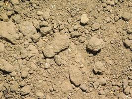 lapp av torr och sprucken jord foto