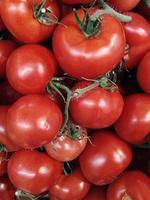hög med röda tomater foto