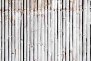 vitt bambustaketmönster foto