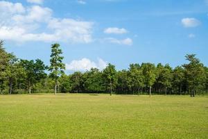 parkera med grönt gräsfält med en vacker park scen bakgrund foto