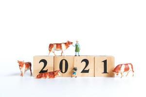 liten oxe och människor på träklossar med siffror 2021 isolerad på en vit bakgrund, en symbol för år 2021 foto