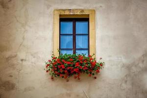 gammal fönsterram med blomlåda