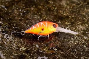 fiske lockare wobbler på en våt sten med mossa