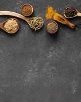 kryddor på en svart bakgrund med kopieringsutrymme