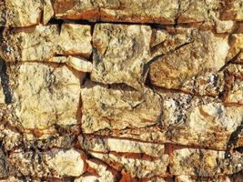 detalj av utomhusstenväggen för bakgrund eller textur foto