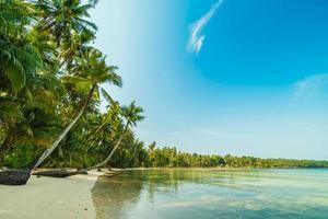 paradisön med strand och hav