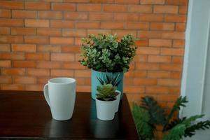 växter på ett bord