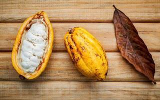färsk kakaopod foto
