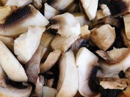 närbild av hög med skivade svampar foto