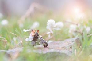 miniatyrpar i trädgården, alla hjärtans dag koncept