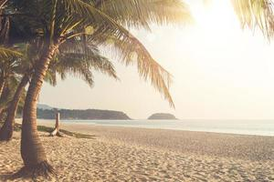 tropisk natur strand solnedgång foto