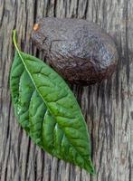 färsk avokado med blad foto