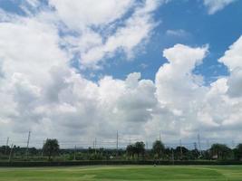 fält av gräs och träd med blå himmel med vita moln foto