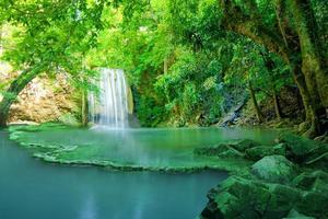 vattenfall i grön skog