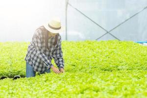 kvinna i hatt som granskar grönsaker i ett växthus foto
