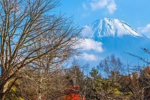 landskap vid Mt. fuji, yamanashi, japan