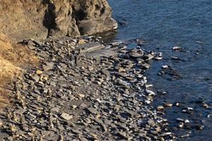 marinmålning av en stenig kust och vatten i Vladivostok, Ryssland