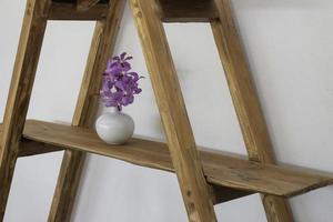stegehylla med en lila växt