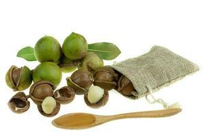 grupp av skalade och oskalade macadamianötter på en vit bakgrund foto