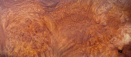 naturlig afzelia burl trä mönster textur bakgrund