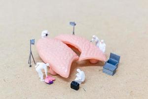 miniatyrforskare som observerar och diskuterar konceptet för mänskliga lungor, virus och bakterieinfektioner foto