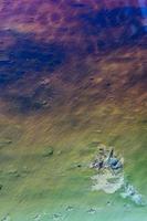 vackra färger i en flod foto