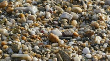 småsten på en strand foto