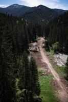 Flygfoto över en väg genom en skog foto