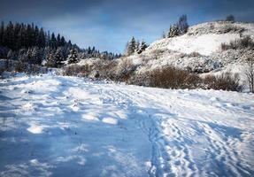 snöigt landskap med kullar foto