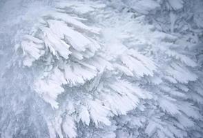 frysta abstrakta snökristaller foto