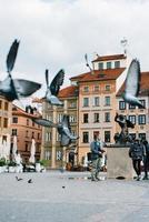 Warszawa, Polen 2017 - flygande fåglar i gamla Europa