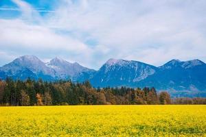 bergen i Alperna i Slovenien
