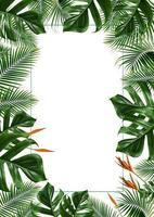 ram för tropiska blad isolerad på en vit bakgrund
