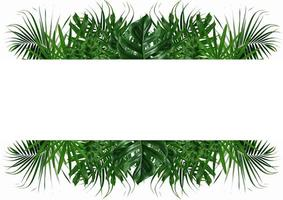 grön natur blad ram på en vit bakgrund foto