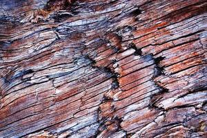 gammalt vittrat trä