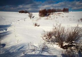 vinter snöigt landskap foto