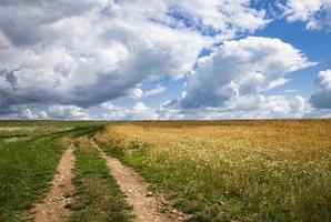 äng med blå himmel och moln foto