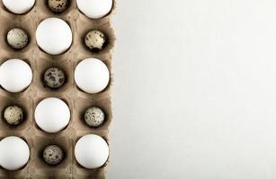 rå kyckling och vaktelägg i en kartongbehållare