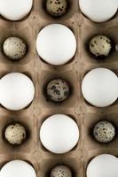 rå kyckling och vaktelägg i en kartongbehållare foto