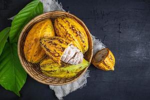 ovanifrån av färsk kakaofrukt foto