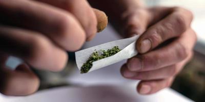person som rullar en cannabisfog foto