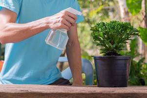 en person som sprutar vatten på en växt i en kruka foto