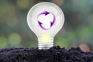 energibesparande glödlampa och affärs- eller affärstillväxtkoncept foto
