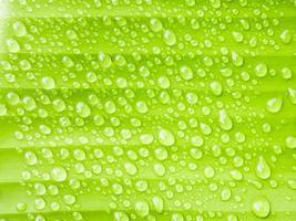närbild vattendroppar på banan grönt blad foto