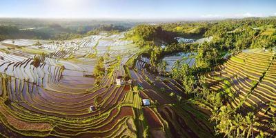 Flygfoto över terrasser på baliris. de vackra och dramatiska risfälten i jatiluwih i sydöstra Bali. foto