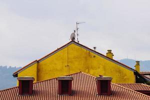 antenn-tv på taket av ett hus foto